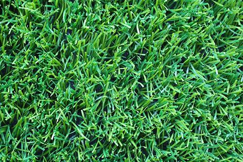 足球场人造草坪1