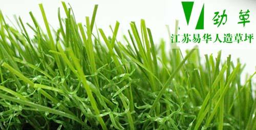 江苏易华人造草坪寸草草丝