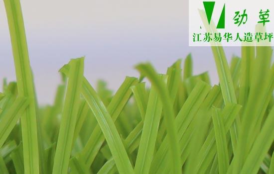 易华人造草坪运动草带筋草丝