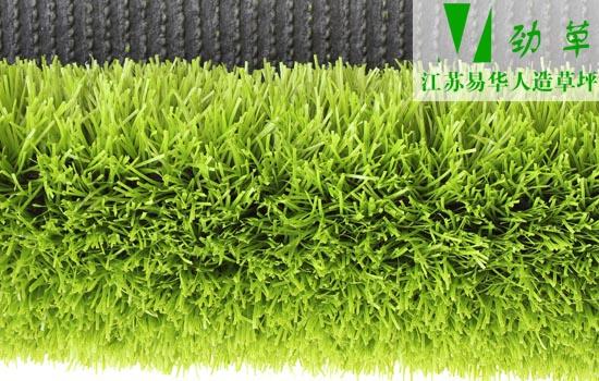 中国人保提供承保的人造草坪