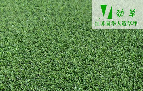 奥运会专用人造草坪