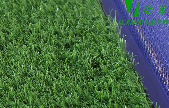 人造草坪厂家教你保养人造草知识维护方法