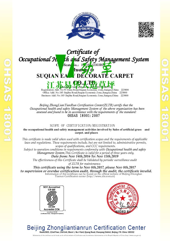 职业健康安全管理体系认证证书OHSAS 18001:2007英文版